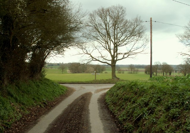 Country_road,_on_the_way_to_Great_Henny_-_geograph.org.uk_-_373080